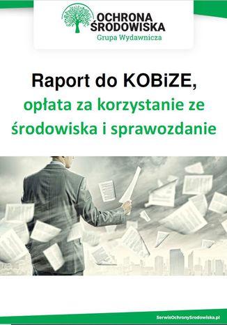Raport do KOBiZE, opłata za korzystanie ze środowiska i sprawozdanie odpadowe