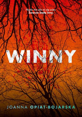 Okładka książki Winny