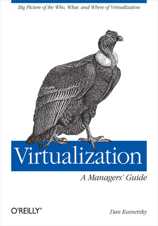 Okładka książki Virtualization: A Manager's Guide. Big Picture of the Who, What, and Where of Virtualization
