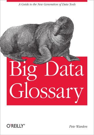 Okładka książki/ebooka Big Data Glossary. A Guide to the New Generation of Data Tools