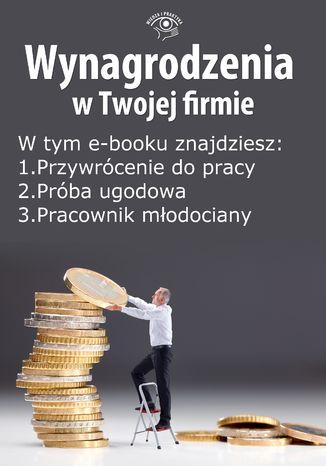 Okładka książki Wynagrodzenia w Twojej firmie, wydanie wrzesień 2014 r. część I