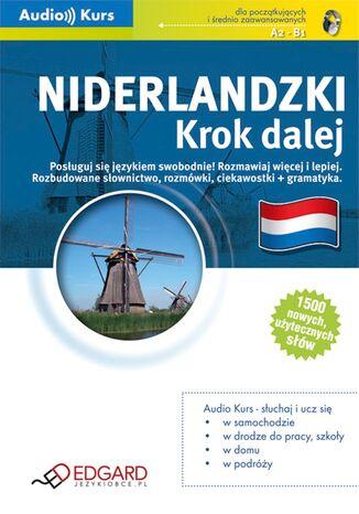 Okładka książki Niderlandzki. Krok dalej