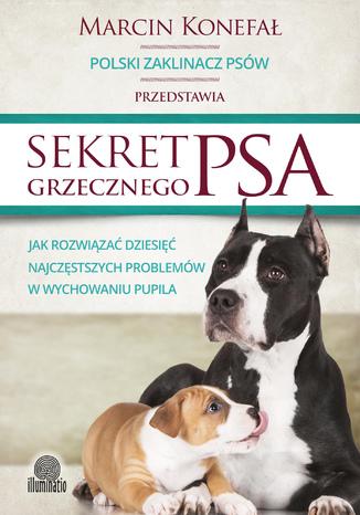 Okładka książki Sekret grzecznego psa. Jak rozwiązać dziesięć najczęstszych problemów w wychowaniu pupila