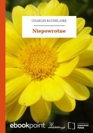 Okładka książki/ebooka Niepowrotne