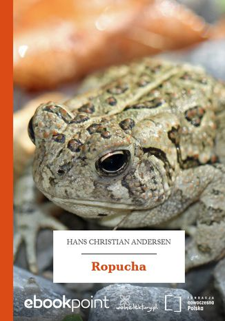 Okładka książki/ebooka Ropucha