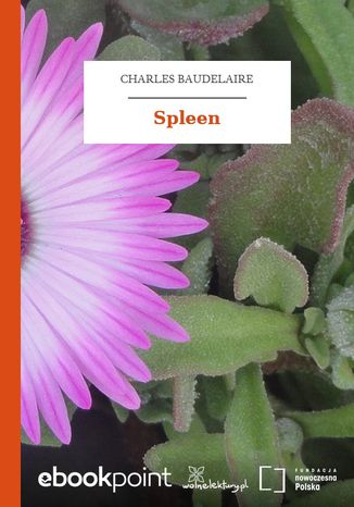 Okładka książki Spleen