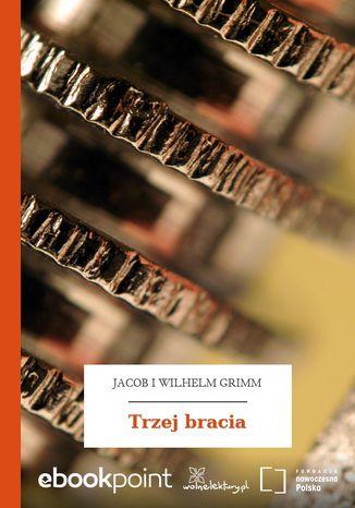 Okładka książki Trzej bracia