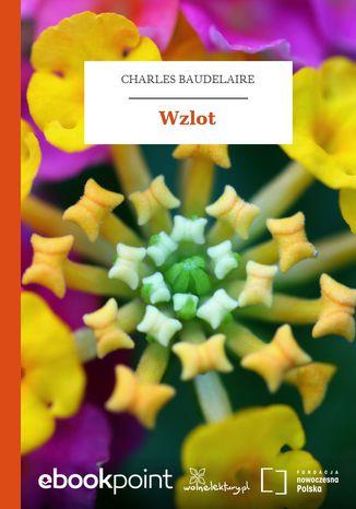 Okładka książki Wzlot