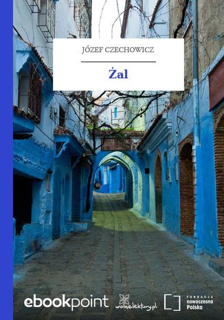 Okładka książki/ebooka Żal