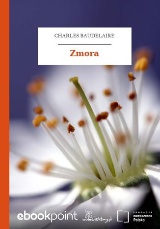 Okładka książki Zmora