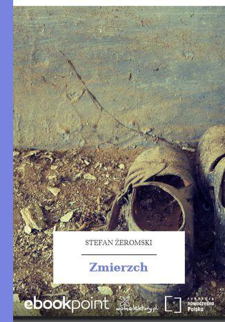 Okładka książki/ebooka Zmierzch