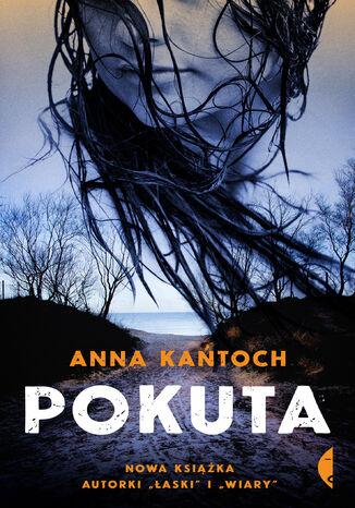 Okładka książki/ebooka Pokuta