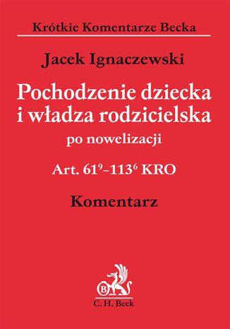 Okładka książki/ebooka Pochodzenie dziecka i władza rodzicielska