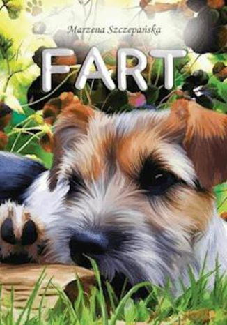 Okładka książki/ebooka Fart