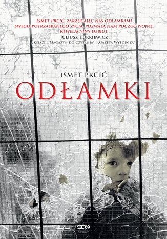 Okładka książki/ebooka Odłamki