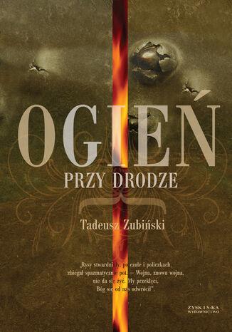 Okładka książki/ebooka Ogień przy drodze