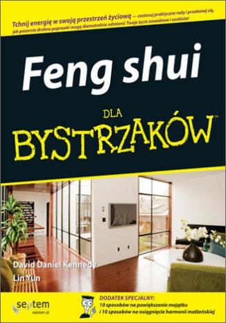 Feng shui dla bystrzaków