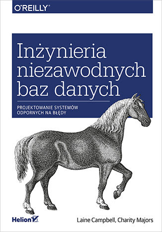 Okładka książki/ebooka Inżynieria niezawodnych baz danych. Projektowanie systemów odpornych na błędy