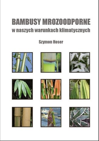 Okładka książki/ebooka Bambusy mrozoodporne w naszych warunkach klimatycznych