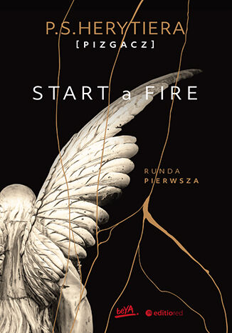 Okładka książki/ebooka Start a Fire