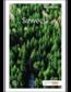 Szwecja. Travelbook. Wydanie 1
