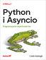 Okładka ebooka pythas
