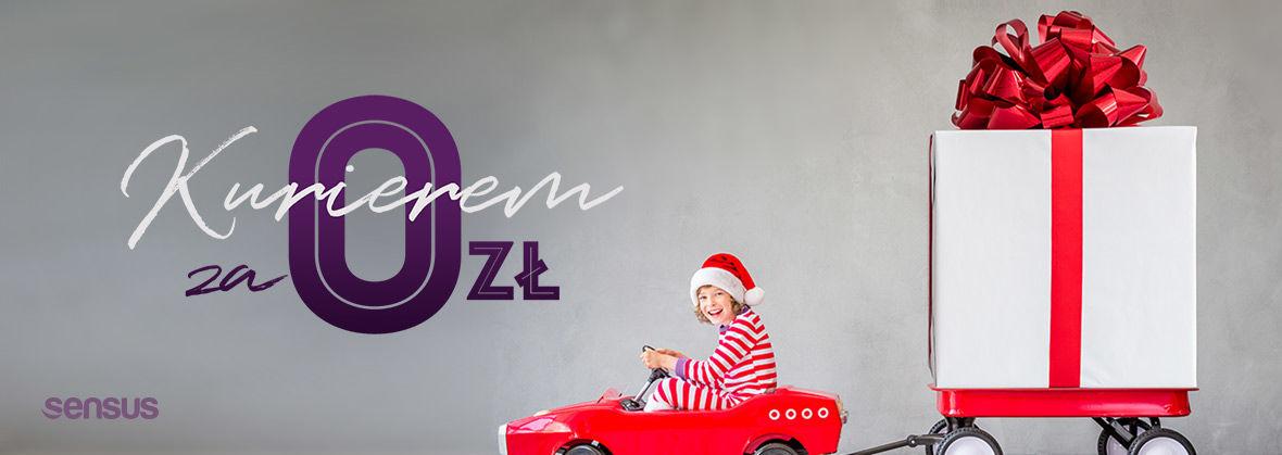 Promocja na ebooki Kurierem za 0zł! / Zaszalej przed Świętami!